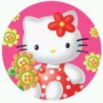 Fotos da gatinha Hello Kitty