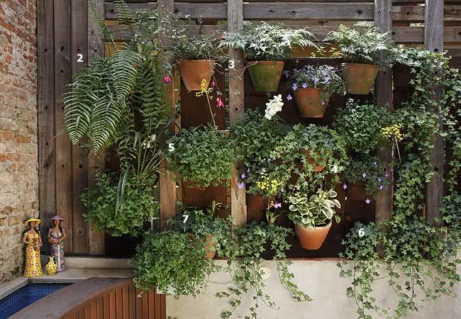 jardim-suspenso