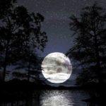 Sonhar com lua – Significados para este sonho