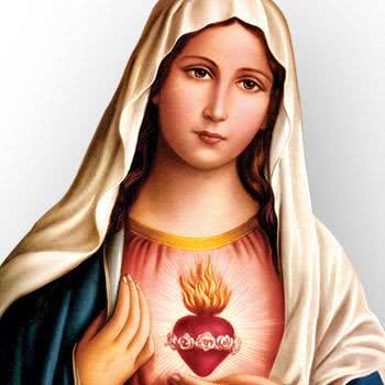 Oração de Ave Maria - Aprenda a prece à mãe de Jesus