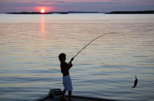 Sonhar com Pesca