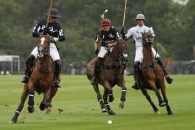 Jogo de Polo Equestre