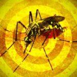 Principais sintomas da febre amarela