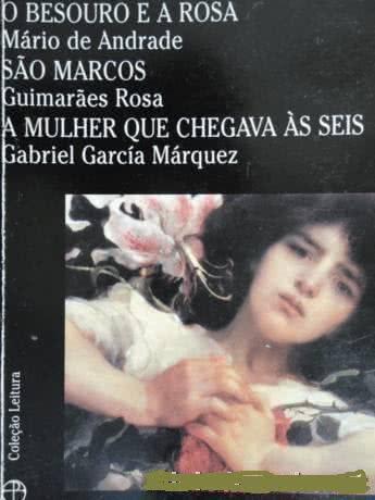 Resumo do livro O Besouro e a Rosa