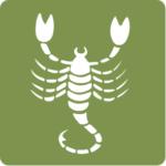 Homem de Escorpião – Perfil do escorpiano