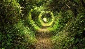 simpatia-para-abrir-seus-caminhos