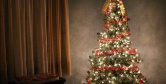 Sonhar com árvore de Natal