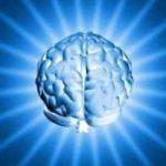 sonhar com cerebro
