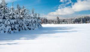 sonhar-com-inverno