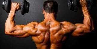 Sonhar com musculação