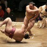 Sumô: história, vídeos e fotos de lutadores