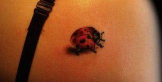 Tatuagem de Joaninha – Fotos