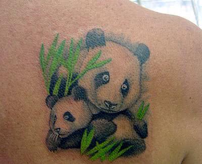 Urso com filhote – nas costas