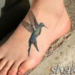 Fotos de tatuagens de beija-flor (pé, costas, ombro)