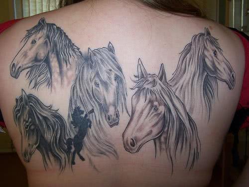 Vários cavalos nas costas