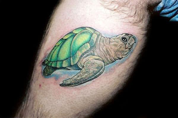 Tatuagem de tartaruga na panturrilha