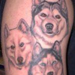 Tatuagens de cachorros – fotos