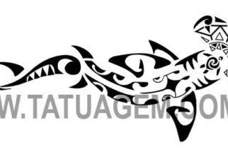Fotos de tatuagem de tubarão!