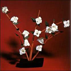 Origami, exemplo, flores